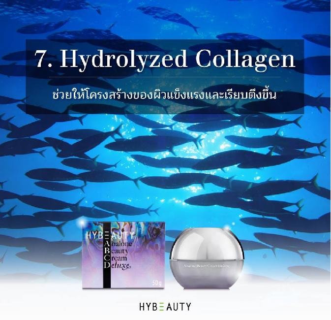 HYBEAUTY ABALONE CREAM DELUXE มีสารสำคัญอะไรบ้าง Hydrolyzed collagen