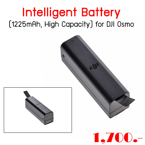 Intelligent Battery (1225mAh, High Capacity) for DJI Osmo