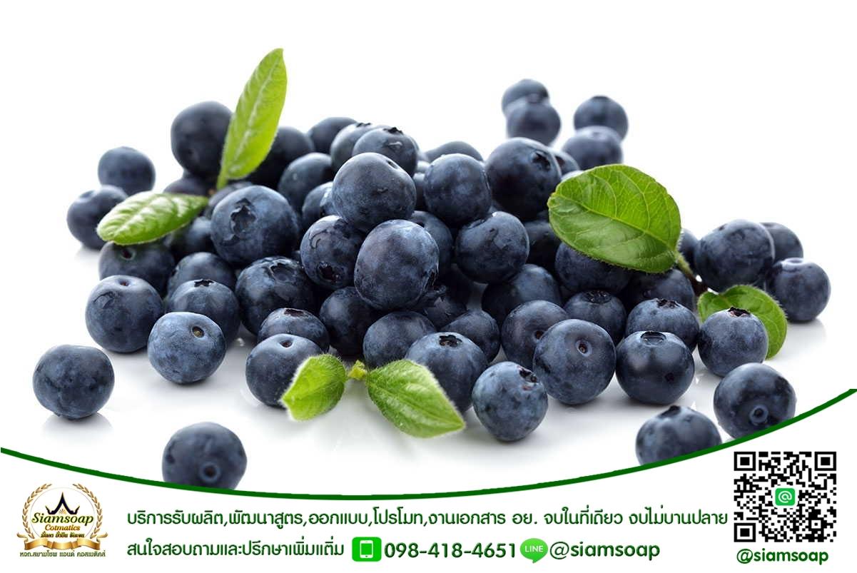 สารสกัดบลูเบอรี่(Blueberry extract)