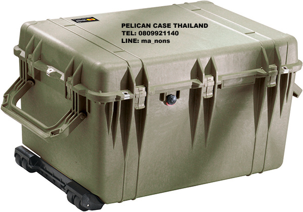 PELICAN™ 1660 CASE WITH FOAM