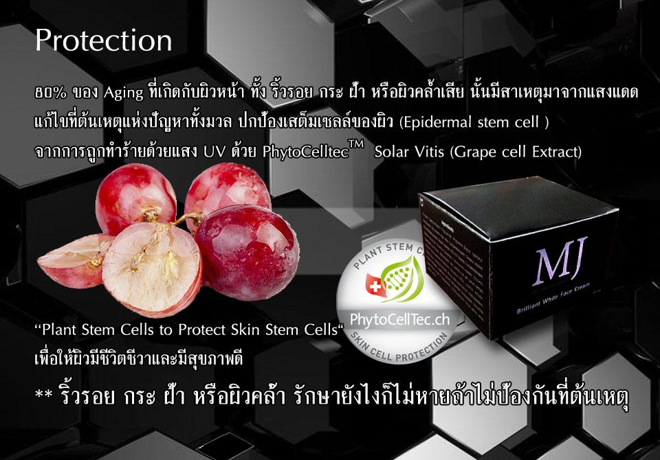 MJ Brilliant White Face Cream ครีมลดฝ้า กระ จุดด่างดำ ของแท้ ราคาถูก ปลีก/ส่ง โทร 089-778-7338-088-222-4622 เอจ