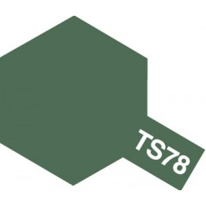 TS-78 field gray2