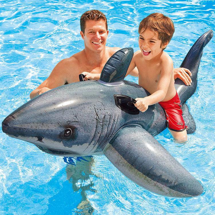 แพยางแฟนซี ปลาฉลาม