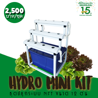 ชุดปลูก Hydro Mini Kit (BC-MINI-12)