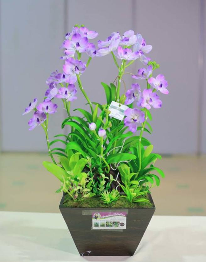 D00022 ดอกไม้ดินไทย