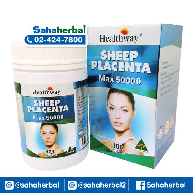 Healthway Sheep Placenta รกแกะ เฮลท์เวย์ SALE 60-80% ฟรีของแถมทุกรายการ